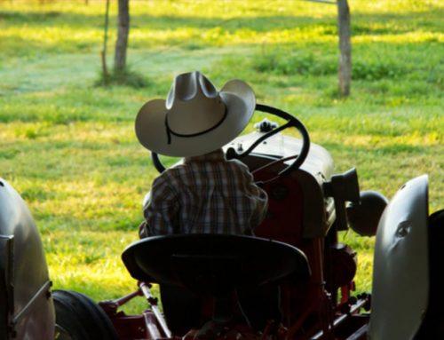 Desafios da sucessão familiar em propriedades rurais